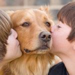 Paw-Pals-Pet-Appreciation-Week-600x294