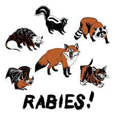Paw-Pals-Pet-Sitting-Animals-with-Rabies