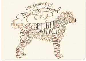 PawPals-Friends-Forever-600x429
