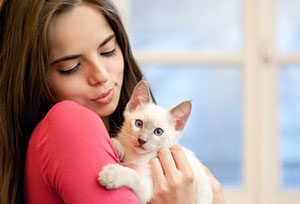 Paw Pals pet sitter taking care of cat during Chantilly, VA cat sitting services
