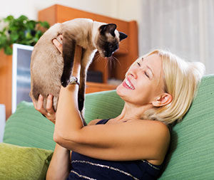 Pet sitter playing with cat during Paw Pals Oakton, VA cat sitting services