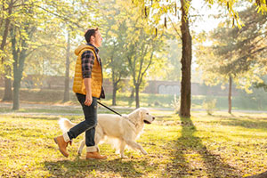 Paw Pals dog walker dog walking service