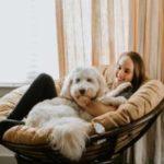 A female dog sitter sitting with a dog