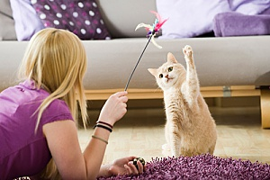 a woman who recently learned how to become a pet sitter and is playing with a cat